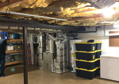 mold-basement-peake